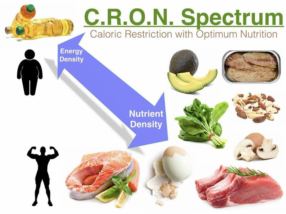 Caloric Restriction with Optimum Nutrition - Image courtesy of Ted Naiman